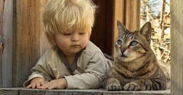 chat et enfant à côté
