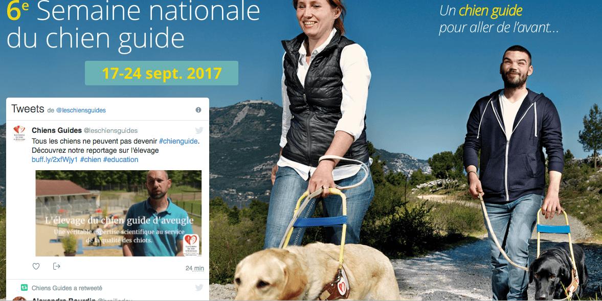 6ème semaine nationale du chien-guide
