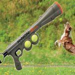 jouet lanceur de balles pour chien