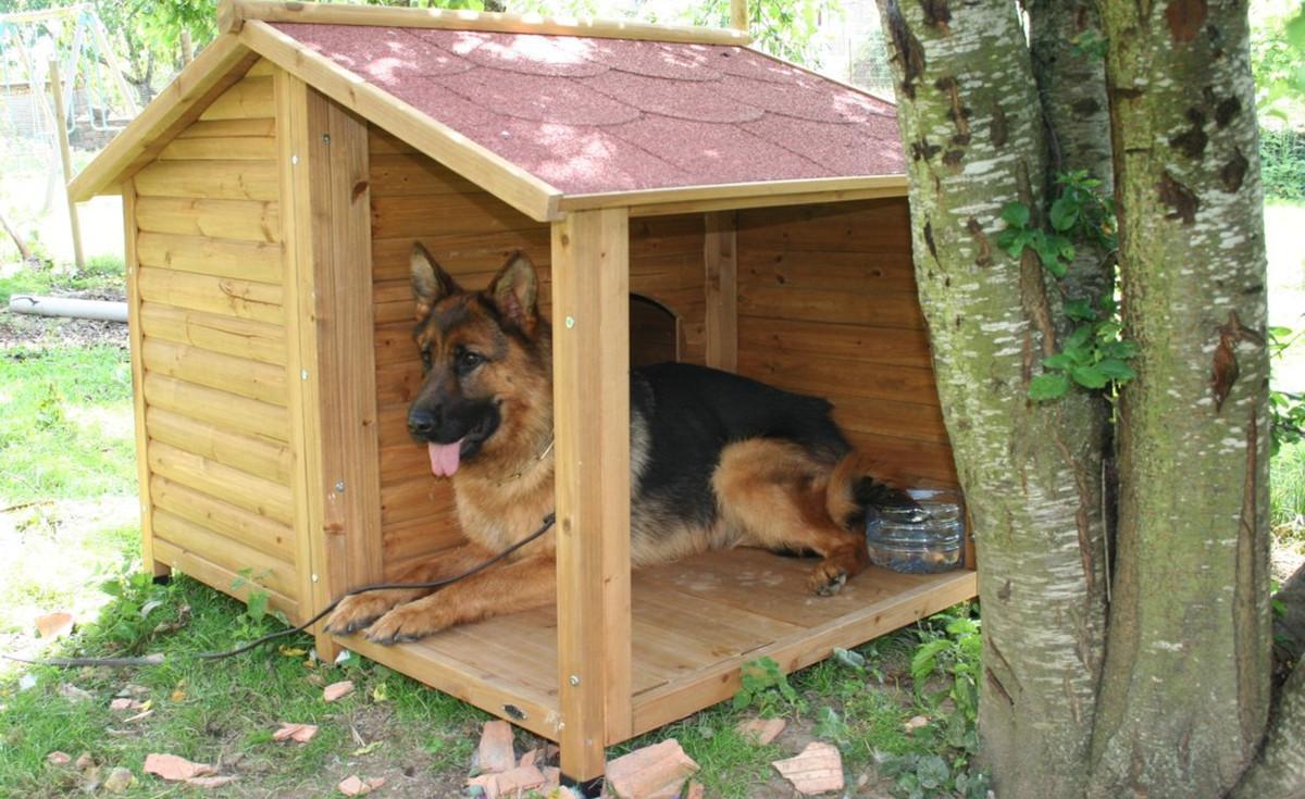 niche pour chien xxl niche a chien xxl achat vente pas. Black Bedroom Furniture Sets. Home Design Ideas